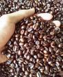 Cà phê sạch nguyên chất Robusta