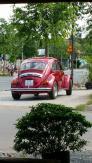 Bán xe Wolkswagel beetle