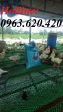 Lưới nhựa cứng sử dụng làm sàn lót cho vật nuôi