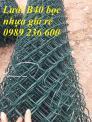 Báo giá lưới B40 mạ kẽm, lưới B40 bọc nhựa giá rẻ tại Hà Nội