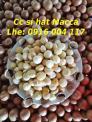 Sỉ lẻ hạt Macca giá rẻ giao toàn quốc Lhe 0916004117