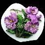 Khuôn silicon làm rau câu cành hoa lan hồ điệp - Mã số 443