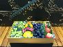 Hộp hoa quả đẹp - Hộp quà 8/3 ngọt ngào - FSNK229