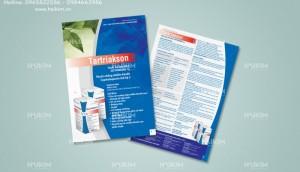 Cần sản xuất, thiết kế - in ấn túi giấy chuyên nghiệp, giá gốc tại xưởng .