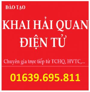 Mở lớp Khai Hải Quan Điện Tử tại Hà Nội và...