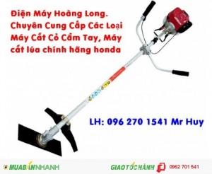 Công ty phân phối máy cắt cỏ các loại giá cạnh tranh nhất