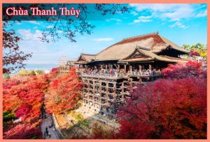 Tour trọn gói Hành Trình Vàng Nhật Bản: Mùa Lá Đỏ 2015 (7N/6Đ)