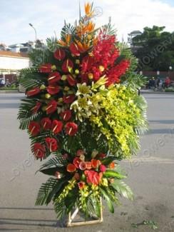 Hoa chúc mừng khai trương, Đặt hoa tươi khai trương tại Thanh Hoá.