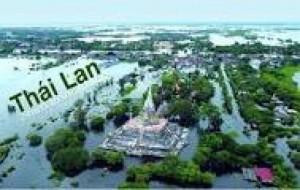 Khóa học tiếng Thái Lan dành cho người mới bắt đầu