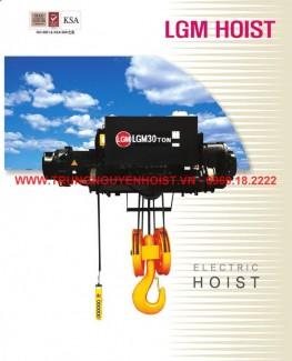 Palang cáp điện LGM 20 tấn, 12 mét mới 100%