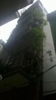 Bán nhà riêng cách Bờ Hồ 2km, 36m2, 5 tầng, ô...
