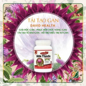 Tái tạo gan David Health - Canadian Milk Thistle