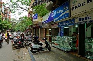 Cho thuê nhà mặt phố cổ Hàng Bạc – HK - HN,...