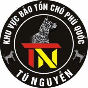 Chó Phú Quốc Giống và Nhận Phối Giống Chó Phú Quốc