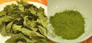 Chuyên Cung cấp sỉ lẻ Bột trà xanh và tinh bột nghệ 300k nguyên chất