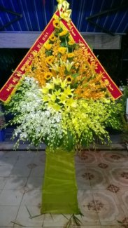 Dịch vụ điện hoa ở Thanh Hóa