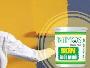 Sơn nhà màu vàng nhạt với sơn đuổi muỗi Antimos