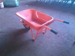 Xe rùa Tam Sanh đẹp bền, vận chuyển dễ d