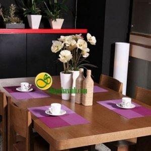 Bộ 4 tấm lót bàn ăn NX105