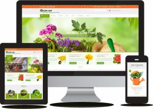 Thiết kế web và nhận SEO web lên Top Google