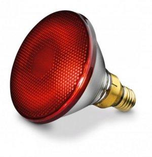 Bóng đèn hồng ngoại trị liệu Philips 150W hàng nhập khẩu chính hãng - Công ty Hợp Phát