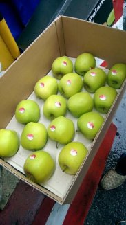 Táo xanh hữu cơ Ba Lan chỉ 45K/kg, thùng 18kg 690K