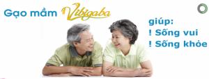 Tại sao nói Gạo mầm Vibigaba – Loại gạo dành riêng cho người tiểu đường ?