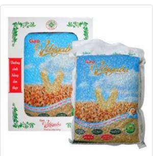 06 lý do bạn nên sử dụng ngay Gạo mầm Vibigaba!