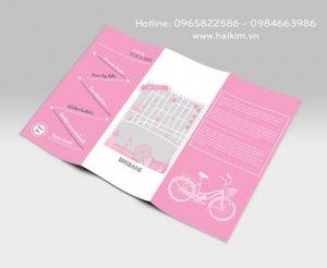 Thiết kế đồ họa, thiết kế tờ rơi, thiết kế catalouge giá rẻ, thiết kế broucher giá rẻ