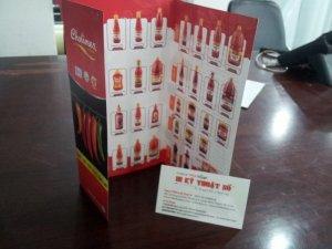 In nhanh brochure | In brochure nhanh, đẹp chất lượng tại TPHCM