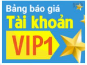 Hãy nhanh chân tham gia ngay Chương trình tài khoản VIP 1!