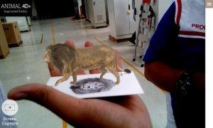 Animal 4D+ thẻ động vật thực tế ảo 4D