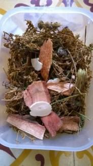 Đây là nguyên phần Bạch Hoa Thảo, kết hợp cùng các loại thảo dược khác (đương quy, cam thảo, cát căn) để tăng vị ngọt, dễ uống và hạn chế ngán nhé!