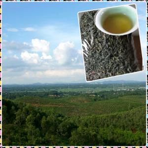 Chè khô Phú Thọ