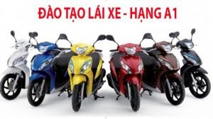 Trung Tâm Đào Tạo Lái Xe Ôtô Hạng B2-C Giá Rẻ...