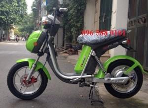 New Xe đạp điện Nijia chính hãng mới nhất 2016