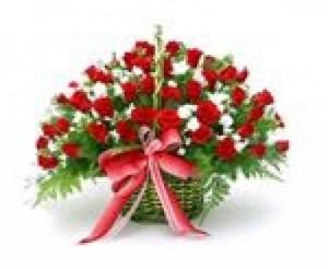 Hoa tươi sinh nhật ở Thanh Hóa