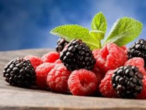 Hạt giống quả mâm xôi đỏ, đen, vàng