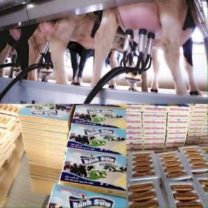 Bánh Sữa Ba Xuyên - Đặc Sản Sóc Trăng