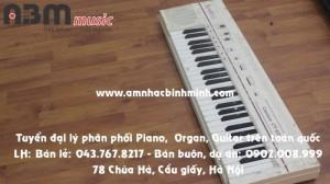 Đàn Organ Casio CT102 giá 500.000 vnđ