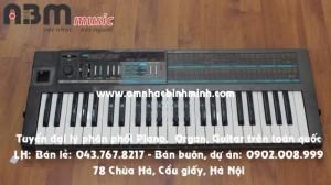 Đàn Organ Korg Poly800