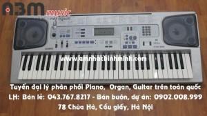 Đàn Organ Casio CTK591