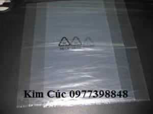 Sản xuất cung cấp bán Túi PE bóng có in hoặc không in, PE gắn zipper