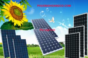 Pin năng lượng mặt trời giá rẻ