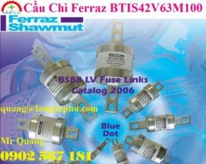 Cầu Chì Ferraz BTIS42V63M100, 63A, 415V, 80KA