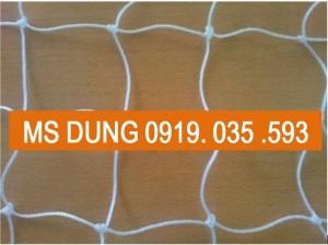 lưới an toàn nhựa PE mắt 10cm trắng