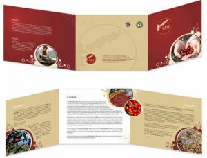 Chuyên nhận gia công in ấn các sản phẩm hộp giấy, túi giấy, catalogue...