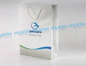 Sản xuất Thiết kế, in ấn túi giấy đẹp, chất lượng giá cạnh tranh