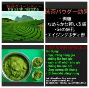 Tìm đại lý phân phối bột trà xanh, đông dược spa