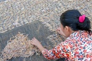 Khô nhái An Giang - Vũ nữ chân dài